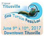 To the detailed Sea Turtle Festival website.