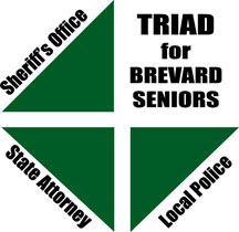 The Brevard Triad logo