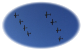 8 in flying formation
