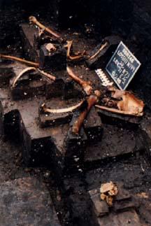 Windover Bog People Archaeological Dig